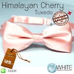 Himalayan Cherry Tuxedo - หูกระต่าย โอโรสอ่อน (6) เนื้อผ้าผิวมัน เรียบ เกรต A (BT279A) by WhiteMKT